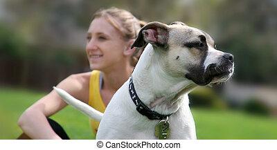 girl, chien, sien