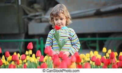 girl, fleur, jeux
