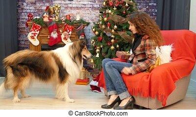 girl, jouer, arbre, noël, chien