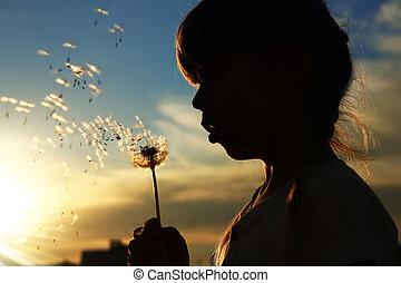 girl, pissenlits, silhouette