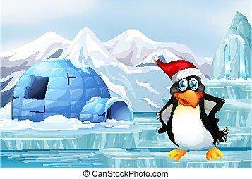 glace, scène pingouin