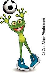 goal, grenouille