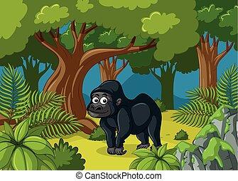 gorille, forêt, profond, vivant