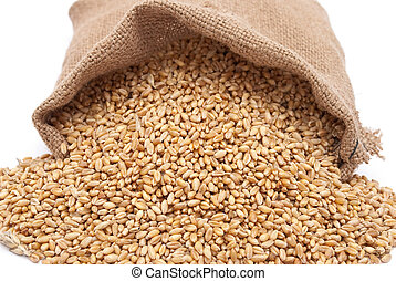 grain, sac, blé, dispersé