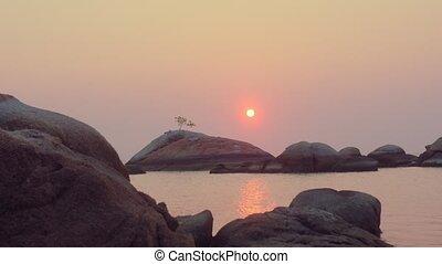 grand arbre, rocher, coucher soleil, solitaire, soleil, rouges