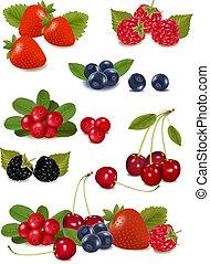 grand, berries., groupe, frais