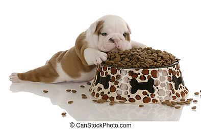 grand, bouledogue, bol, pose, chien, à côté de, nourriture, petit, chiot