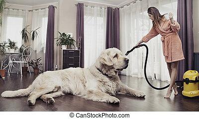 grand, femme ménage, chien, jeune