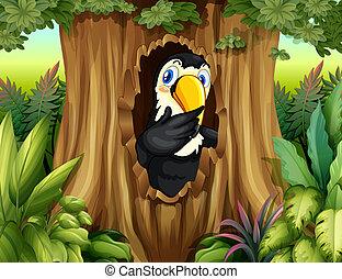 grand, forêt, oiseau