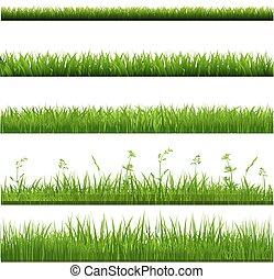 grand, frontières, herbe, ensemble