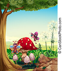 grand, papillons, arbre, champignon