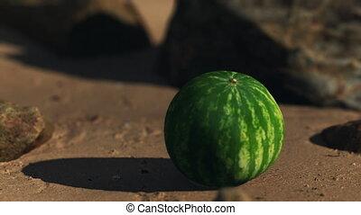 grand, plage sable, pastèque, juteux