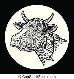 graphique, isolé, main, fond, head., vaches, dessiné, blanc, style.