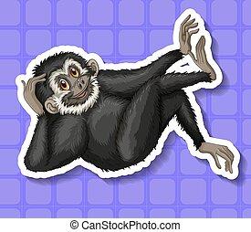 grattant tête, sien, noir, gibbon