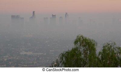 gratte-ciel, air, highrise, bas, californie, toxique, visibilité, problèmes, ville, urbain, skyline., sale, écologie, los, métropole, usa., pollution, smog, brumeux, cityscape, en ville, fog., angeles