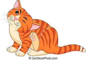 grattement, itchy, dessin animé, chat