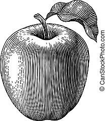 gravé, pomme