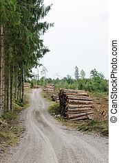 gravier, log-piles, bord route