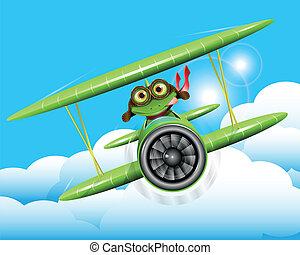 grenouille, pilote