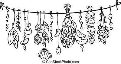griffonnage, decoration., isolé, illustration, herbes, boho, vecteur, sorcière, pendre
