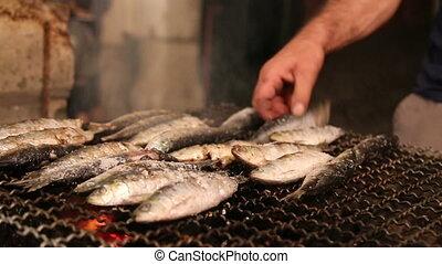 gril, fish