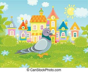gris, herbe, marche, pigeon