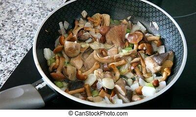 gros plan, délicieux, moule, frit, oignon, champignons, friture