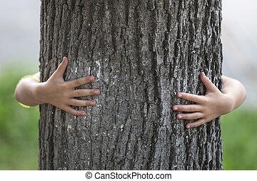 gros plan, grand, coffre, arbre, détail, isolé, croissant, derrière, embrassé, enfant, petit, fort, hands.