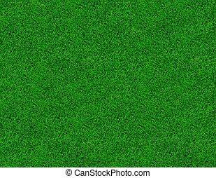 gros plan, printemps, image, vert, frais, herbe