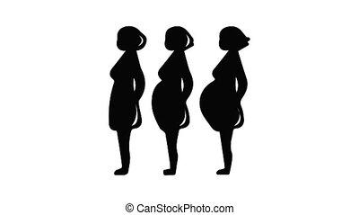 grossesse, icône, étape, animation