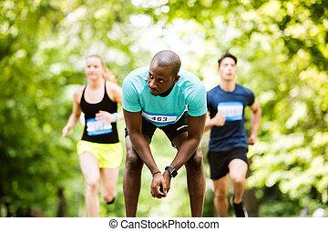 groupe, ensoleillé, jeune, courant, course, vert, athlètes, park.