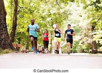 groupe, ensoleillé, jeune, courant, park., vert, athlètes
