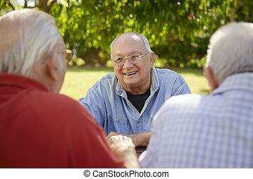 groupe, hommes, parc, rire, amusement, personne agee, avoir
