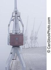 grues, brouillard