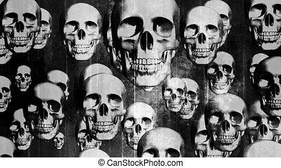 grunge, horreur, noir, blanc, crânes, résumé, boucle