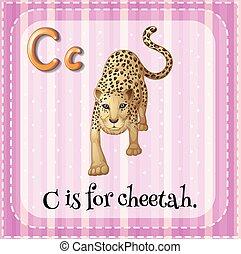 guépard, c, lettre, flashcard