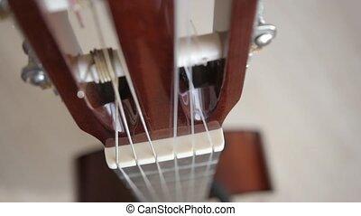 guitare, acoustique, bois, fond