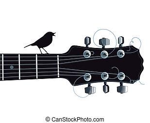 guitare, oiseau chant