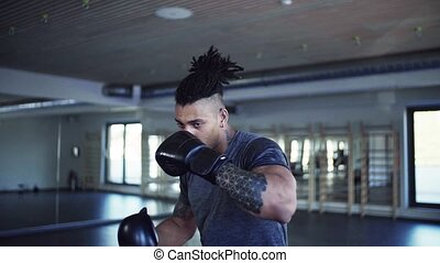 gymnase, boxe, jeune, gants, indoors., exercice, homme