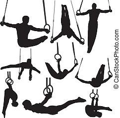 gymnastique, silhouettes, vecteur, anneaux
