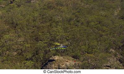 hélicoptère, arbres
