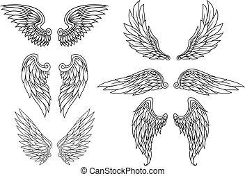 héraldique, ensemble, ailes