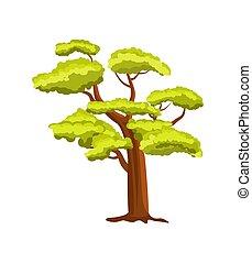 hêtre, vert, vecteur, arbre, icône
