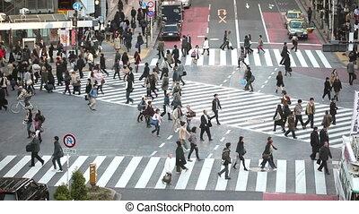hachiko, croisement, défaillance, tokyo, temps