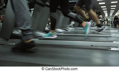 hall., speeds., différent, mouvement, gens, gymnase, plafond, peu, lampes, jour semaine, tapis roulant, chaque, athlète, rempli