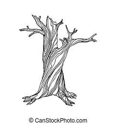 halloween, arbre, sec, mort, vacances, caractère, branches, mystique, inanimé