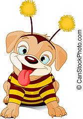 halloween, bee-dog