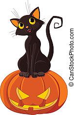 halloween, chat, citrouille