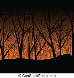 hanté, forêt