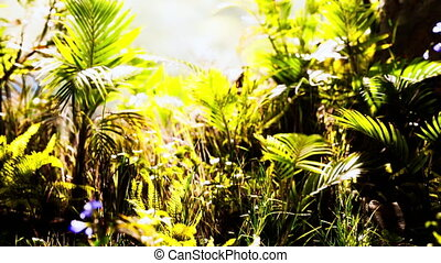 haut, jungle, fin, usines, herbe